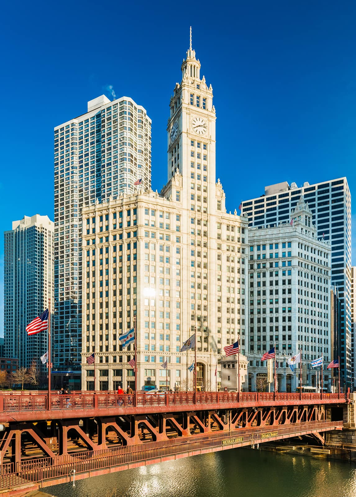Chicago Tour Tours In